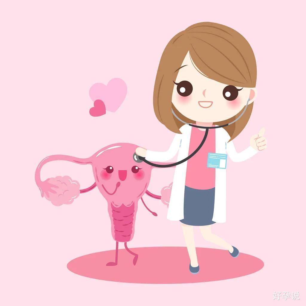 拿什么拯救你,我的子宫内膜!插图2