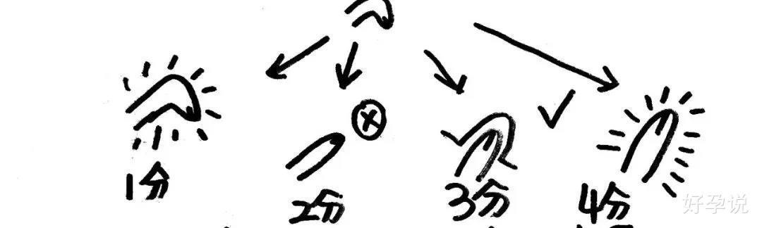 丁丁的平均长度是多少?插图2