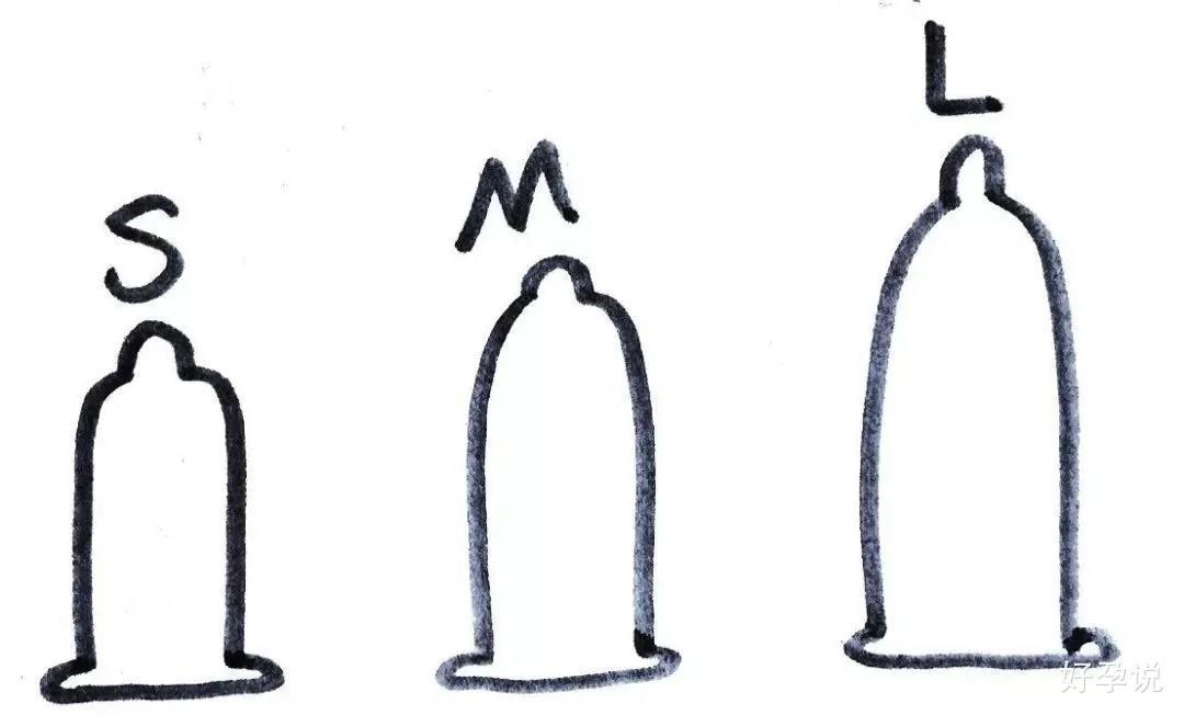 丁丁的平均长度是多少?插图6