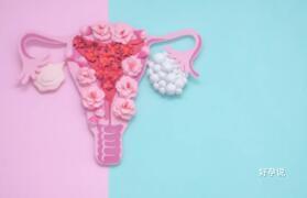 多囊卵巢该如何备孕?插图