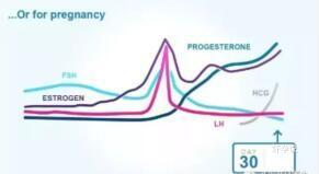 孕酮低=即将流产?医生的结论是……插图