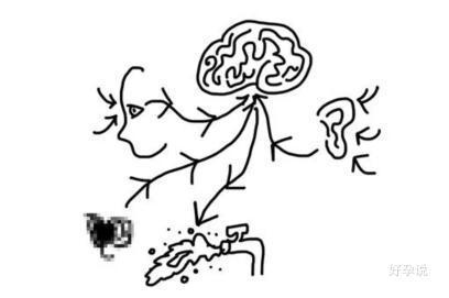 不要慌,75%的男人有早泄现象,这5个办法能解决!插图3