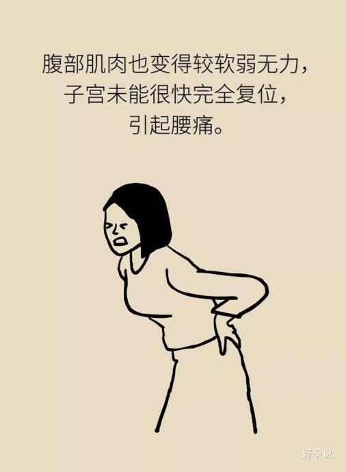 抢先一步,预防产后腰疼!插图14