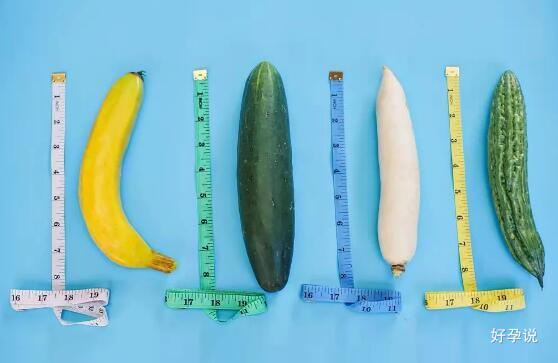 找老公,十八厘米和四十分钟哪个更重要?插图3