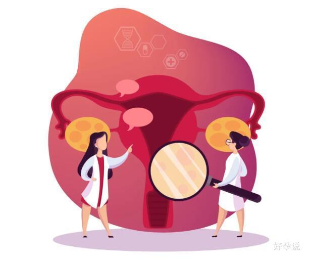 盘点:医生常用调理子宫内膜的方案有哪些?插图