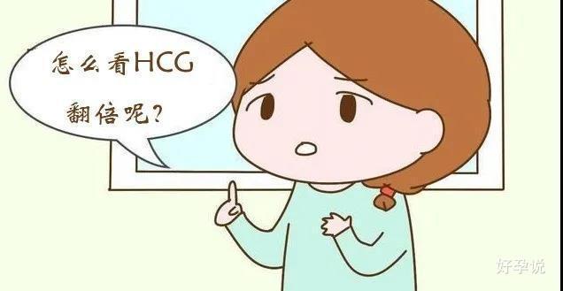 """你翻倍了吗?医生教你如何正确判断""""HCG翻倍""""!插图1"""