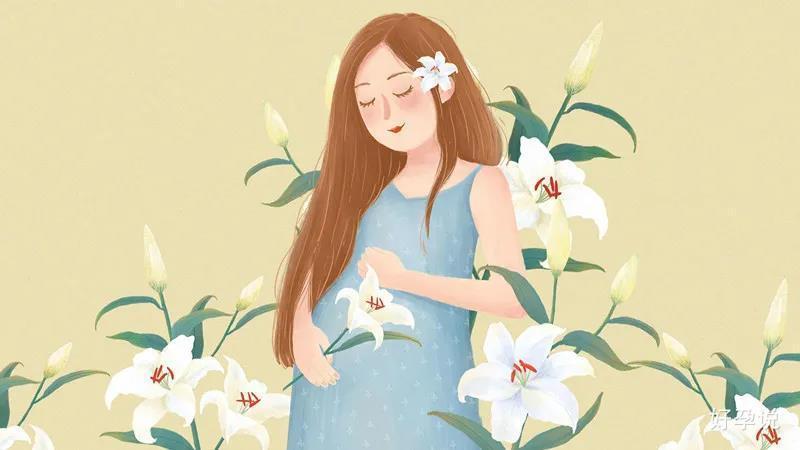 子宫后位影响怀孕吗?插图3